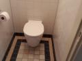 renovatie-toilet-oude-stijl-2